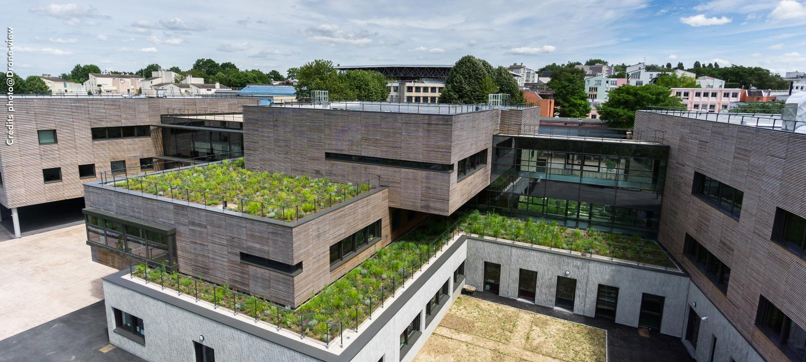 Mastering Green Roofs (1.5 LU/HSW)